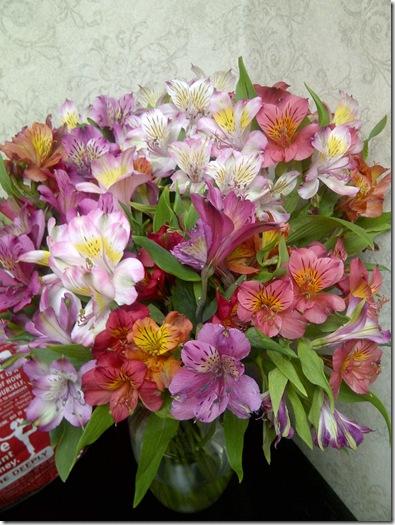 IMG-20120220-01063