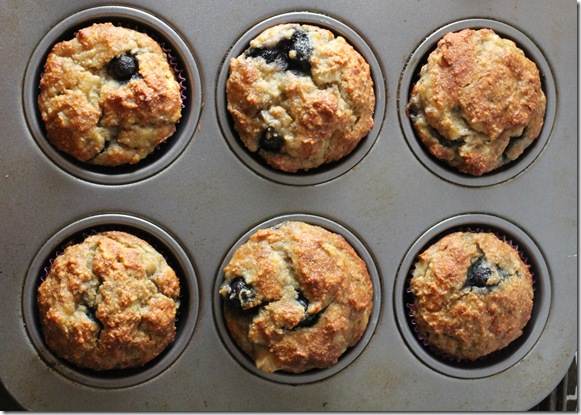 healthy fruit muffins no sugar fruit cups