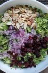 broccoli_slaw-11.jpg