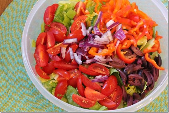 taco seasoning & salad (8)