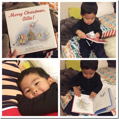 christmas books - countdown (1)