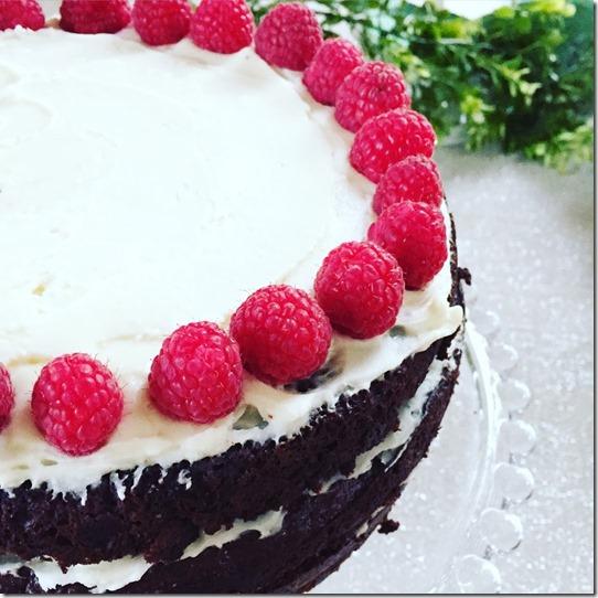 chocolate cake (6)
