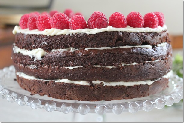 chocolate cake (8)