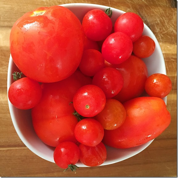 tomatoes from our garden