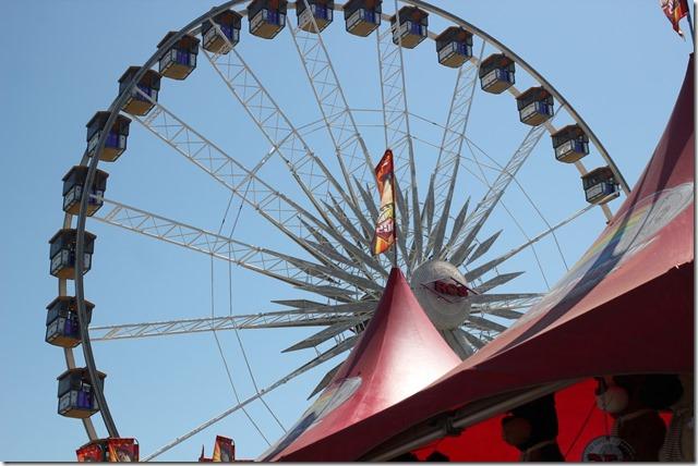 OC fair - summer 2016 (8)