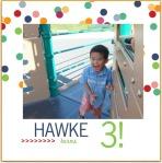 hawke-turns-3-photobook-1.jpg