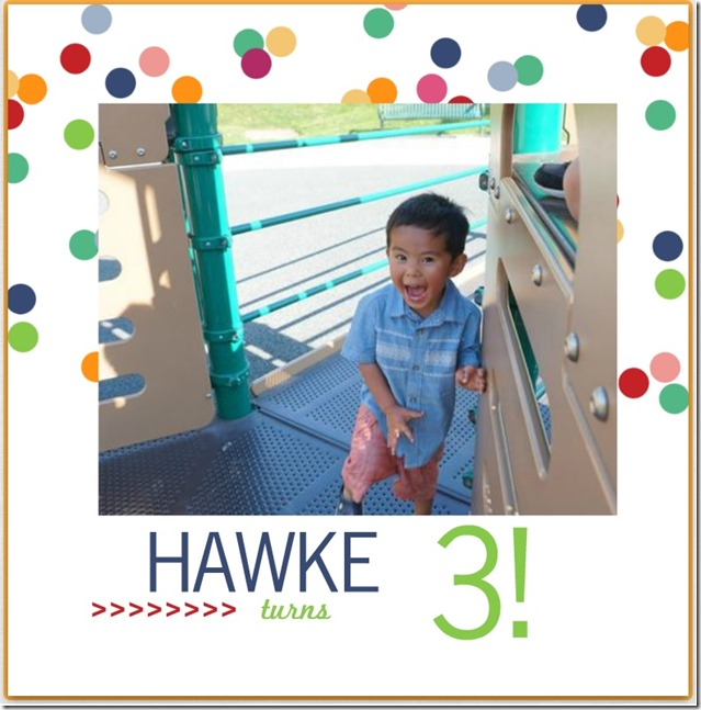 hawke turns 3 photobook (1)