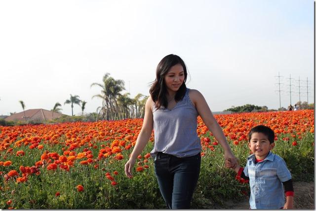 Carlsbad Flower Fields (28)
