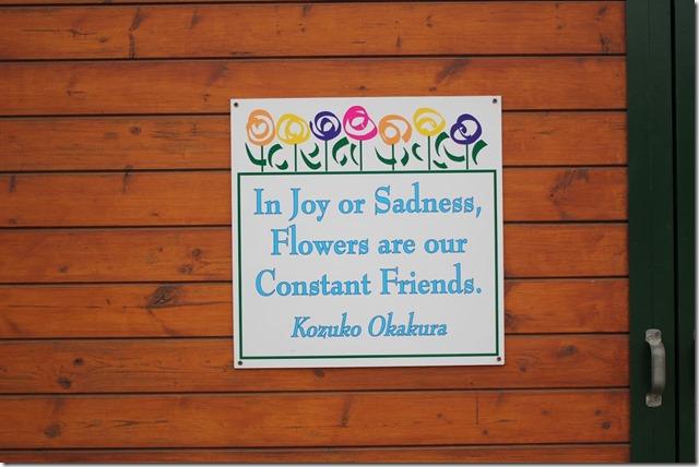 Carlsbad Flower Fields (41)